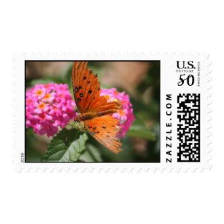 butterfly on lantana postage