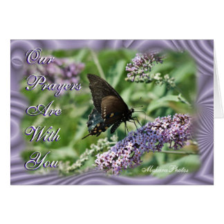 Butterfly on Lavender Bush-customize it Greeting Card