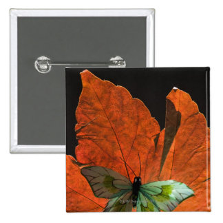 Butterfly on leaf 2 button