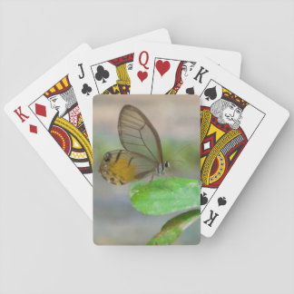 Butterfly On Leaf, Iquitos, Maynas, Peru Poker Cards