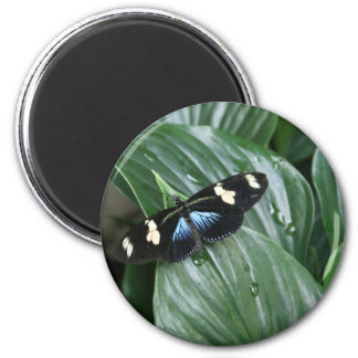 Butterfly on Leaf Magnet