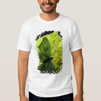Butterfly on leaf t shirt
