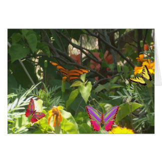 Butterfly On Leaves Note Card