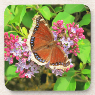Butterfly on Lilacs Beverage Coaster