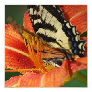 Butterfly on Lily Personalized Invitation