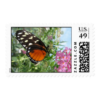 Butterfly on Mackinac Island Postage Stamps