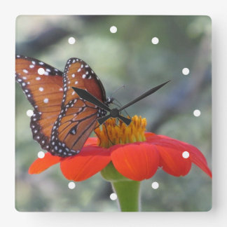 Butterfly on Mexican Sunflower Clock
