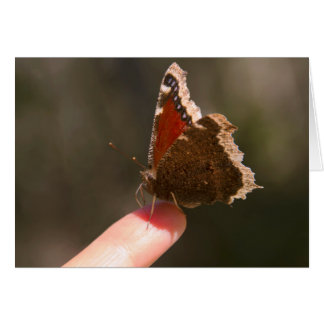 Butterfly On My Finger Card