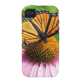 Butterfly on Pink Flower iPhone 4/4S Covers