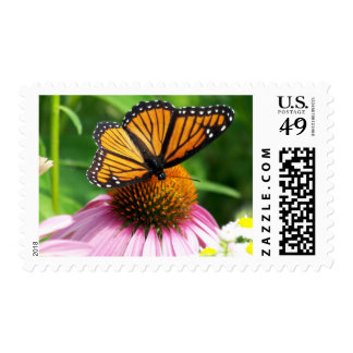 Butterfly on Pink Flower Stamp