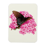 Butterfly on Pink Lantanas Flexible Magnets