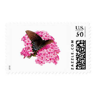 Butterfly on Pink Lantanas Postage