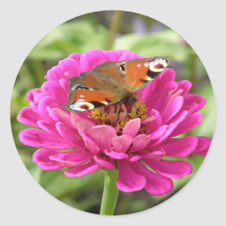 Butterfly on Pink Zinnia Classic Round Sticker