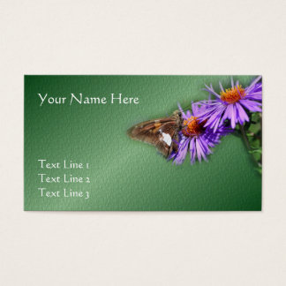 Butterfly On Purple Asters Nature Business Card