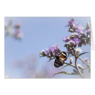 Butterfly on purple blossom branch card