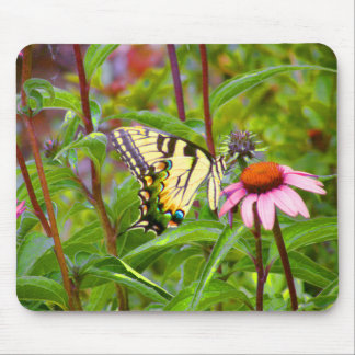 Butterfly on Purple Coneflower Mouse Pad