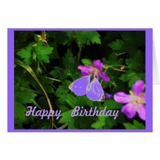 Butterfly on Purple Flowers birthday card