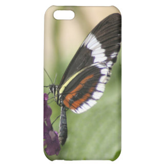 Butterfly On Purple Side Cover For iPhone 5C