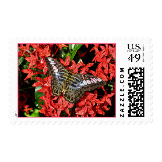 Butterfly on Red Flowers Stamps
