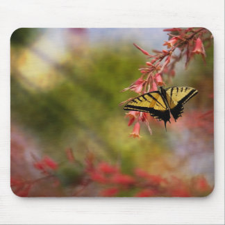 Butterfly On Red Yucca Mouse Pad