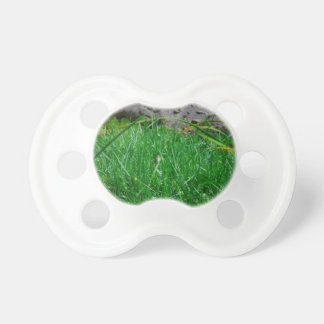 butterfly on reed alligator background pacifier