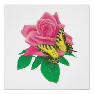 Butterfly on Rose Poster