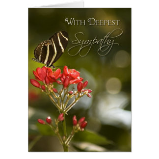 Butterfly on Royal Poinciana Sympathy Card