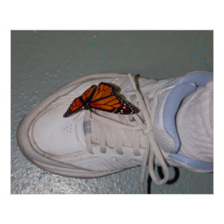 Butterfly on Sneaker Close-up Poster