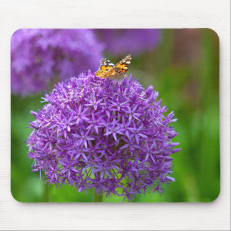 Butterfly on the Allium flower Mouse Pad