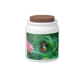 Butterfly On The Edge Candy Jars