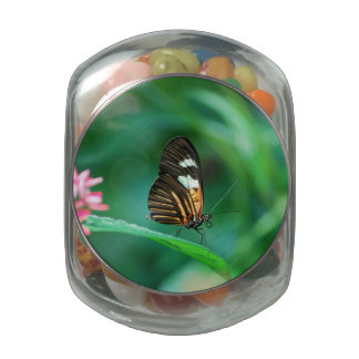 Butterfly On The Edge Glass Candy Jar
