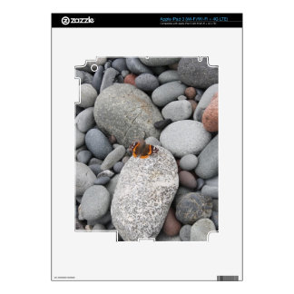 Butterfly on the rocks decals for iPad 3