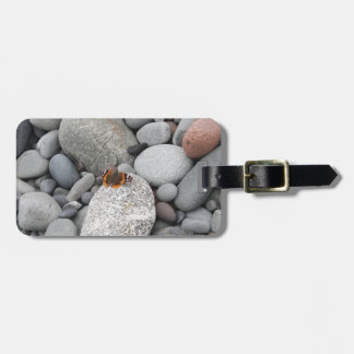 Butterfly on the rocks luggage tag