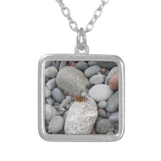 Butterfly on the rocks silver plated necklace