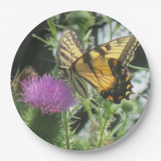 Butterfly On Thistle Paper Plate 9 Inch Paper Plate