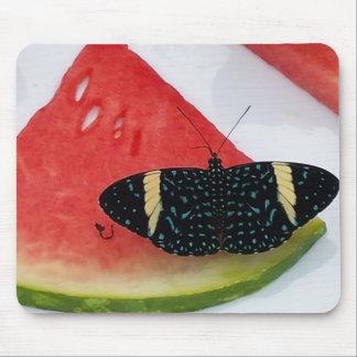 Butterfly on Watermelon Mousepad