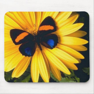 Butterfly on Yellow Daisy Mouse Pad