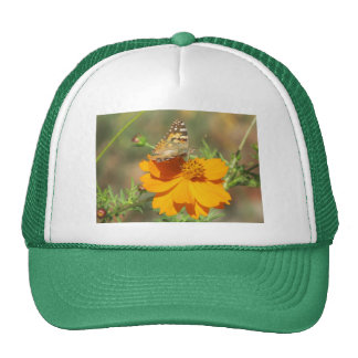 Butterfly on Yellow Flower Hats