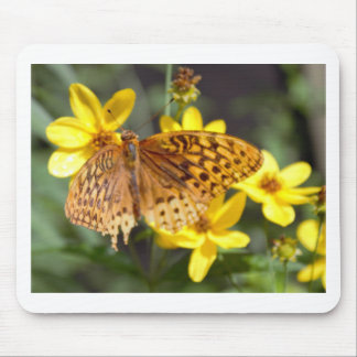 Butterfly on Yellow Flower Photo Mouse Pads