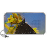 Butterfly on Yellow Flower Portable Speakers