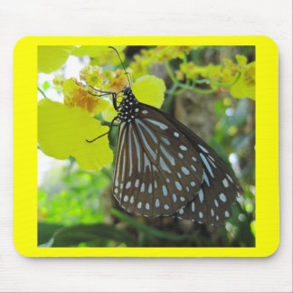 Butterfly on Yellow Orchid Mouse Pad