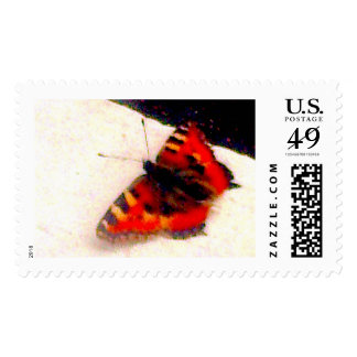butterfly orange stamp yin yang
