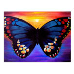 Butterfly Painting Art - Multi Post Cards