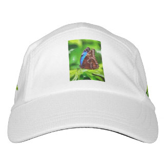 Butterfly painting headsweats hat