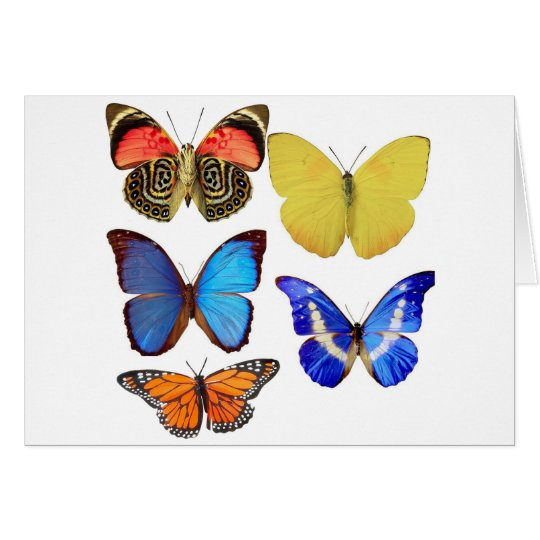 butterfly paper card