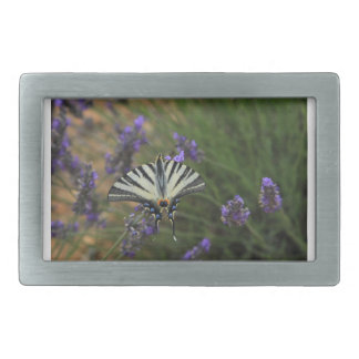 Butterfly - Papilio machaon on flowering lavender Rectangular Belt Buckles