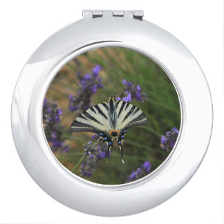 Butterfly - Papilio machaon on flowering lavender Compact Mirror