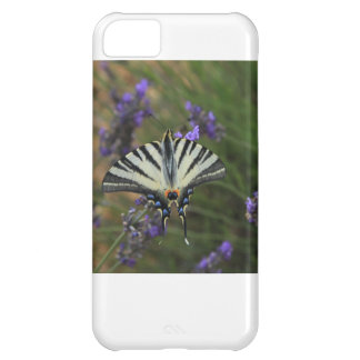 Butterfly - Papilio machaon on flowering lavender iPhone 5C Cover