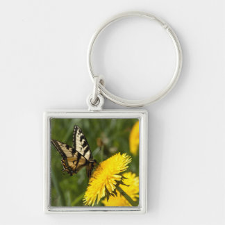 Butterfly Perch Silver-Colored Square Keychain