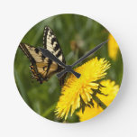 Butterfly Perch Wall Clocks